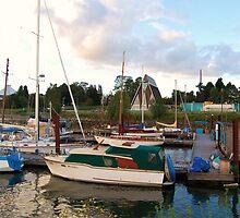 Bright boats by Helen Carmichael