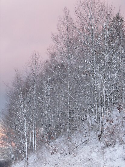 Winter Twilight in The Smokies by Jean Gregory  Evans