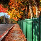 An Autumn Road by Monica M. Scanlan