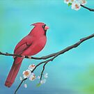 Springtime Cardinal by Joob Whitman