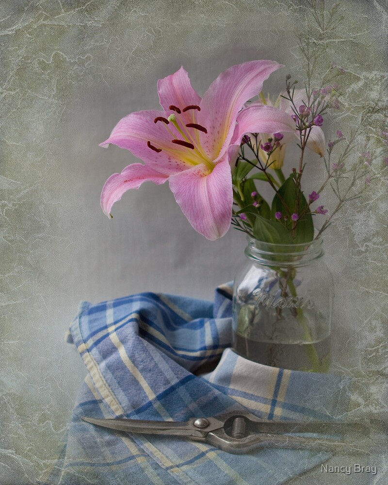 The Pink Lily by Nancy Bray