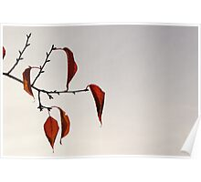 Red and Droopy Hanging Poster