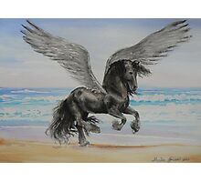 Friesian Pegasus Photographic Print