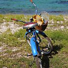 Beach Bike by phluffhed88