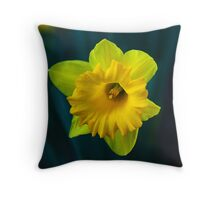 Host Of Gold III Throw Pillow