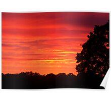 Sunset In Knebworth Park Poster