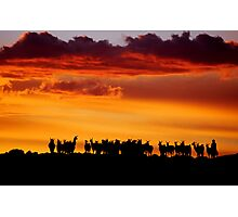 Sunset Llamas, Bolivia Photographic Print