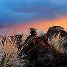 Waikoloa Dusk by Ellen Cotton