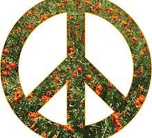 Peace by portokalis