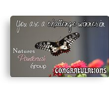 Butterfly Challenge Winner Canvas Print