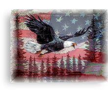 America...Land Of The Free, Home Of The Brave Canvas Print