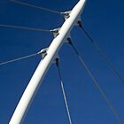 Cable Stay Bridge Support (Denver, Colorado) by Brendon Perkins