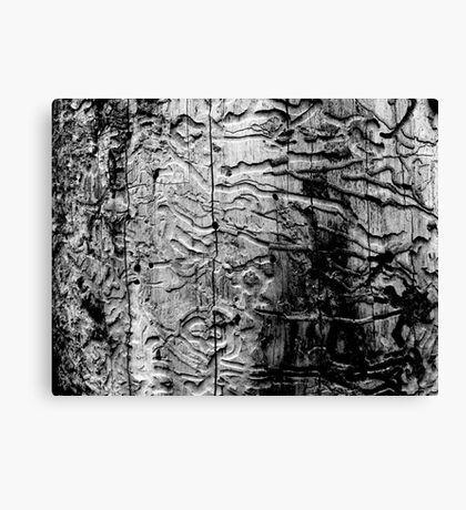 Wormwood Canvas Print