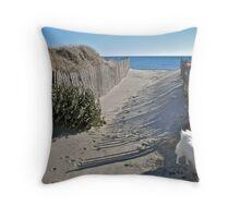 Winter Beach Christmas Tree - Series 2011 Throw Pillow