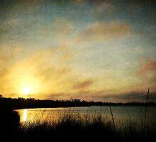 As the Fog Rolls In by Jonicool