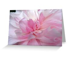 Pretty In Pink, First In Series Greeting Card