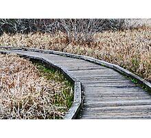 boardwalk Photographic Print