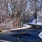 Snow on Kennesaw Mountain by Janie Oliver