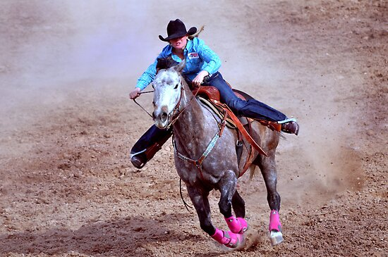 Rodeo Cowgirl by Barbara Manis