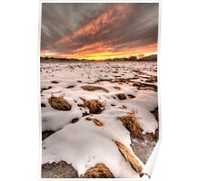 Snow, Straw and Sunset Poster