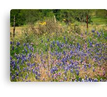 Wildflowers Pink and Blue Canvas Print