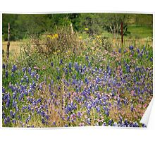 Wildflowers Pink and Blue Poster