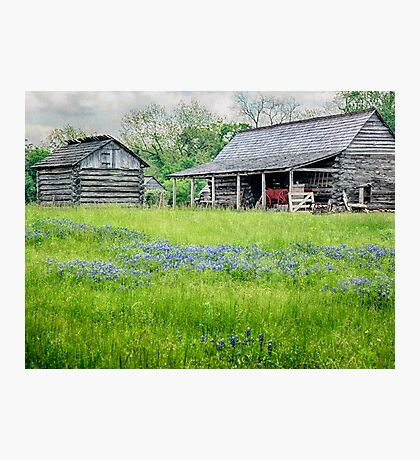 Bluebonnet Farm Photographic Print