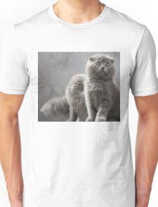Scottish Fold kittens Unisex T-Shirt