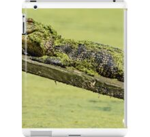 Gator Hanging Out iPad Case/Skin