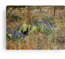Bluebonnets and Cactus II Metal Print
