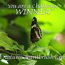 You are a Challenge Winner in Natures Paintbrush Group by Madcowontherun