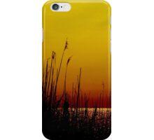 Sparkling Horizon iPhone Case/Skin