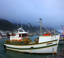 Low cloud over Kalk Bay harbor by MarkySA