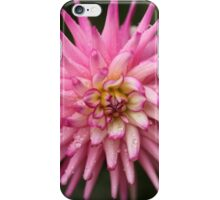 Flowers in the rain iPhone Case/Skin