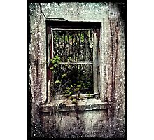 Reclaimed Photographic Print