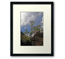 Dunn's Swamp - Kandos NSW Australia Framed Print