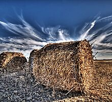 Texas Hay by jphall