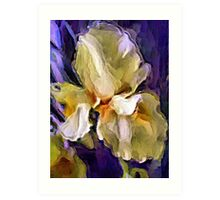 Painted Iris Art Print