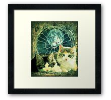 Two's Company! Framed Print