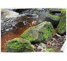 Mossy Rocks - Cut River Poster