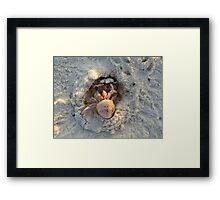 having fun  on the beach Framed Print