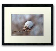 Marshmallow Roast Framed Print