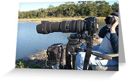 My Cameras by imagetj