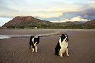Beach bliss by Michael Haslam