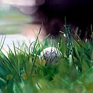 """""""Possibility"""" - oil painting of a golf ball sitting in the grass by James  Knowles"""