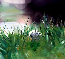 """Possibility"" - oil painting of a golf ball sitting in the grass by James  Knowles"