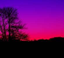 Evening Rainbow - Gunpowder Falls SP by Matthew Kocin