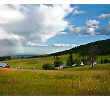 White Ranch, CO by DavidDArnold