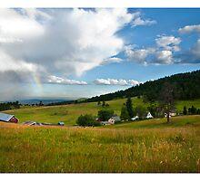 White Ranch, CO by DavidDArnold