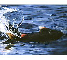 """Salmon Splash"" - oil painting of a salmon Photographic Print"
